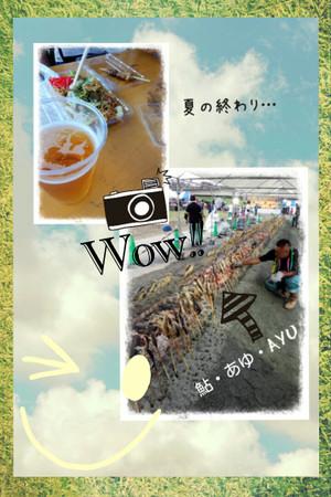 Camerancollage2014_08_23_230557
