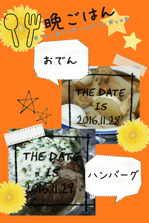 Camerancollage2016_11_30_004133