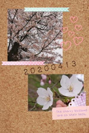 Share_2020_04_13_190851