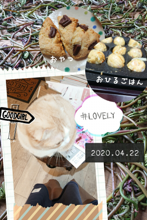 Share_2020_04_22_234609